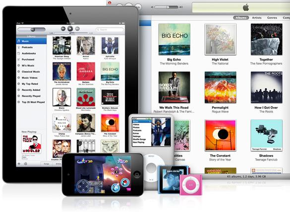 Carte-cadeau iTunes 10 $ Screenshot 2