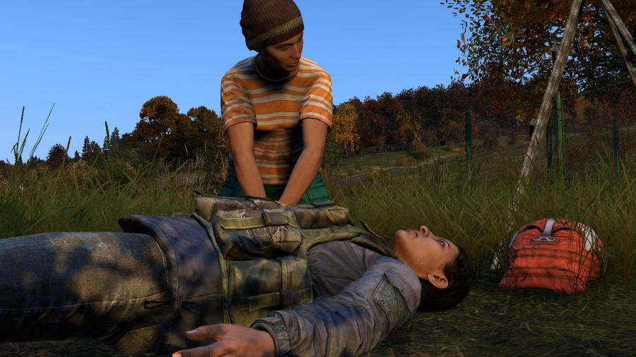 DayZ Screenshot 8