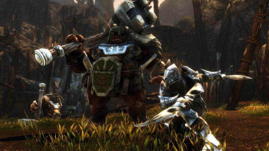 Kingdoms of Amalur Re-Reckoning Screenshot 3
